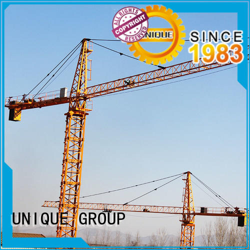 UNIQUE reliable building crane manufacturer for factory buildings